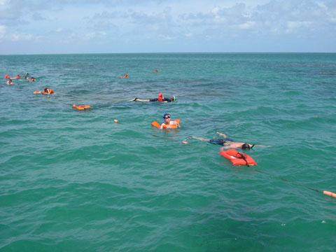 22.Snorkel.jpg