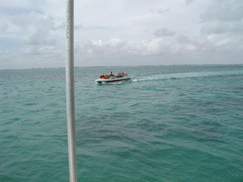 39.snorkel2.jpg