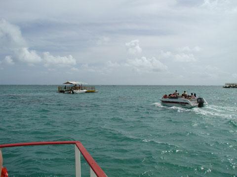 41.snorkel4.jpg