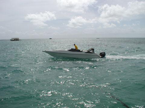 42.snorkel5.jpg