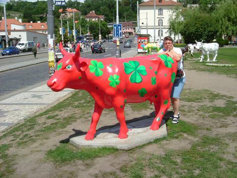Cow14.jpg