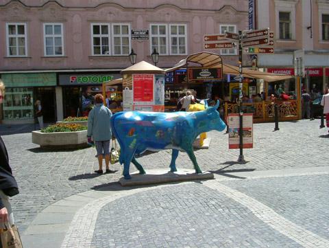 Cow18.jpg