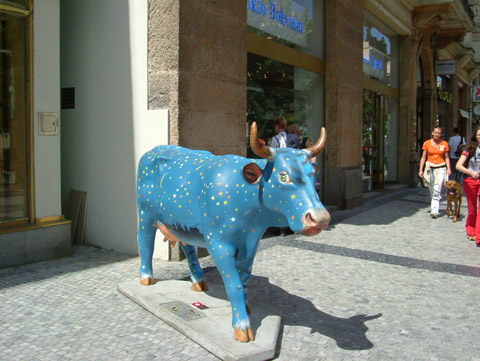 Cow21.jpg