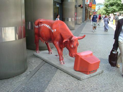Cow27.jpg