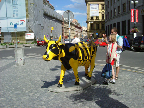 Cow28.jpg