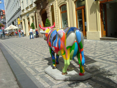 Cow29.jpg