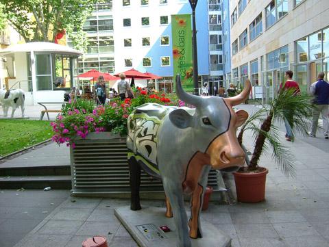 Cow31.jpg