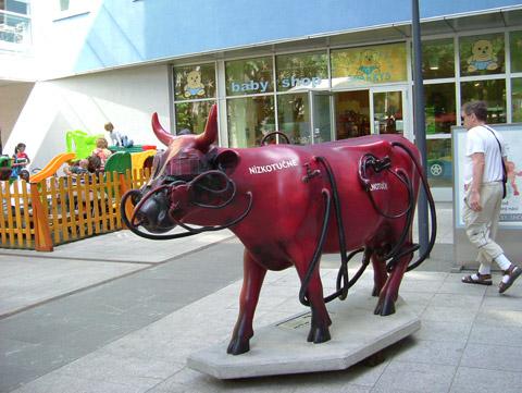 Cow34.jpg