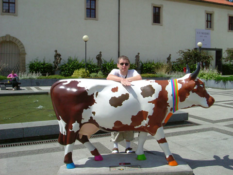 cow10.jpg